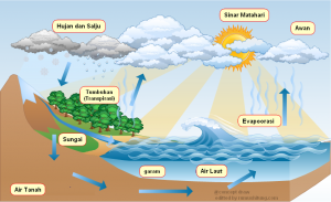 siklus air dan tahapan lengkap