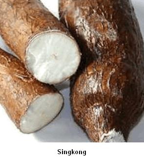 singkong sumber karbohidrat