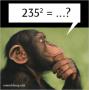Trik Cepat Mencari Kuadrat Bilangan