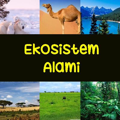 Contoh Dan Pengertian Ekosistem Alami Ekosistem Darat Dan Perairan